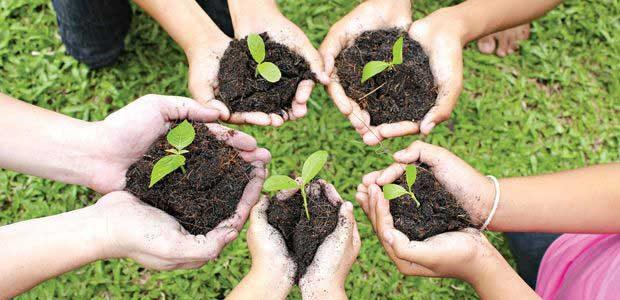 A importância do contato com a natureza para as crianças